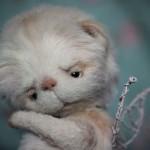 Мастер-класс мишка Тедди от Марики Шмидт