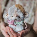 Мышка Тедди курс от Марики Шмидт