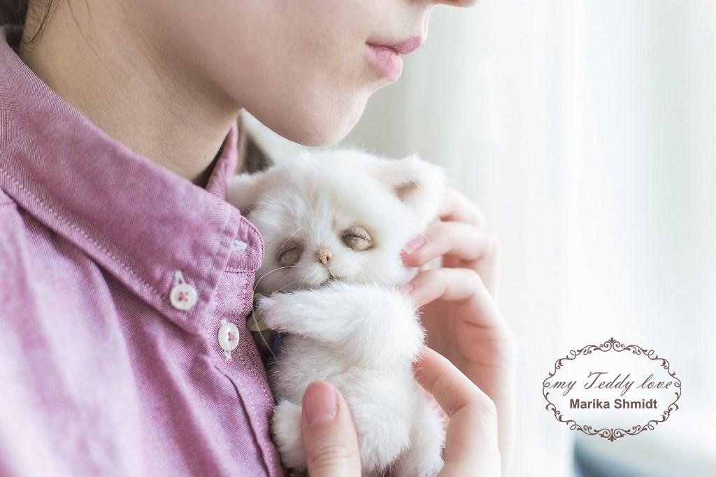 котенок тедди Марика Шмидт