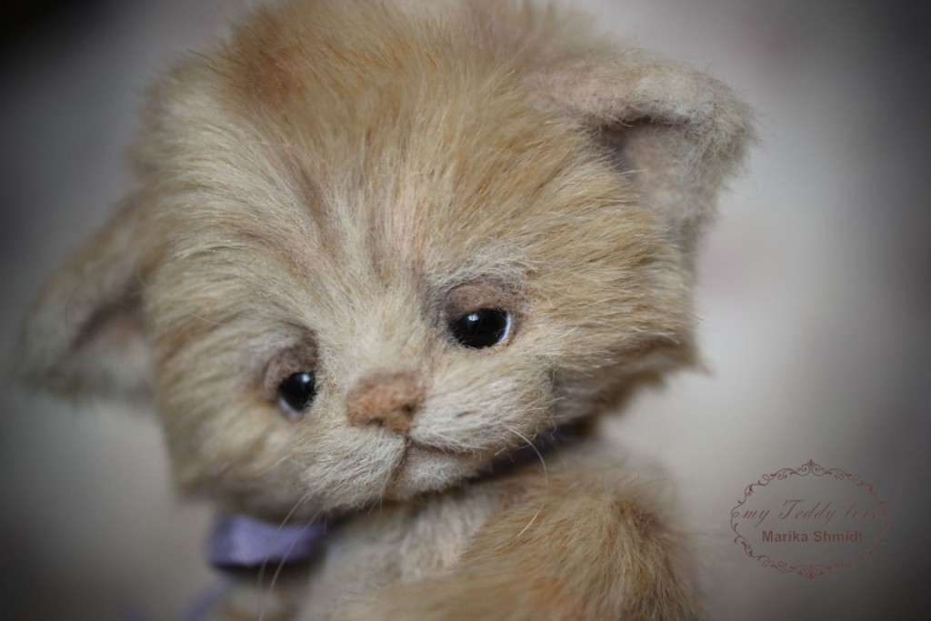 Войлочный носик для котенка Тедди