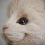Курс кролик Тедди от Марики Шмидт