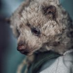 Мишки тедди Марика Шмидт