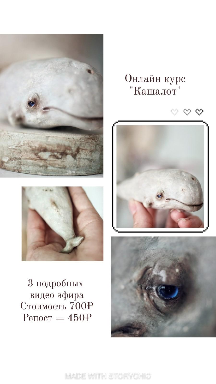 Киты Марики Шмидт